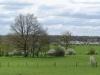 Daar is de lente, daar is de zon. Bijna, maar ik denk dat ze weldra zal komen. De fallus impudicus staat al in bloei, En de blaadjes krijgen bomen. Jan De Wilde