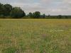 hooiland langs de Aisne