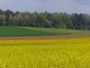 de landbouw draagt zorg voor het landschap: glyfosfaat bruin zorgt voor een extra tint