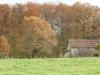 herfst 2010, forêt de Lisle