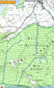wandeling_forêt de Bellenoue